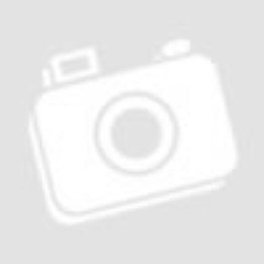 Norbi Update Low Carb Kókuszízű krémmel töltött belga tejcsokoládé kókuszreszelékkel, édesítőszerekkel 90 g